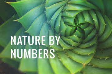 nature-by-numbers
