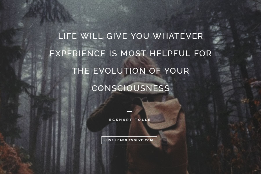 experience-evolution-eckhart-tolle