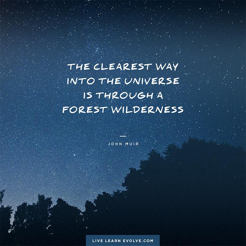 universe_wilderness_john_muir_small_web
