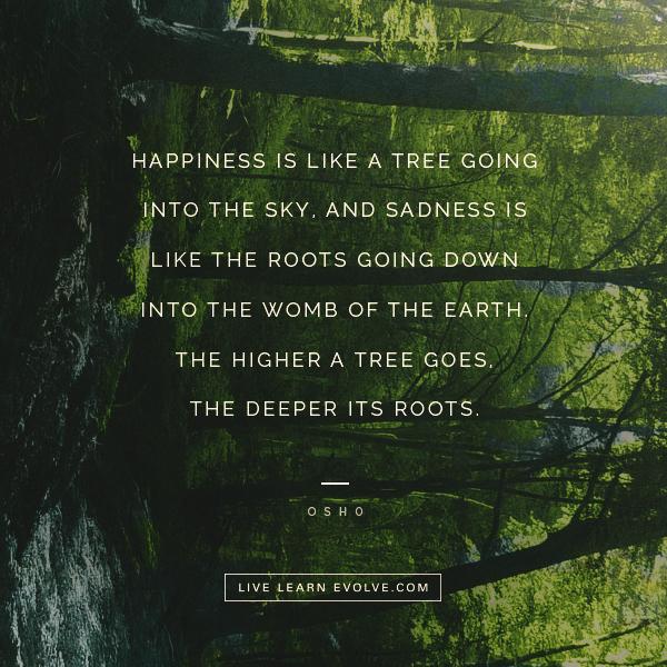 happiness-paradox-tree-osho_insta
