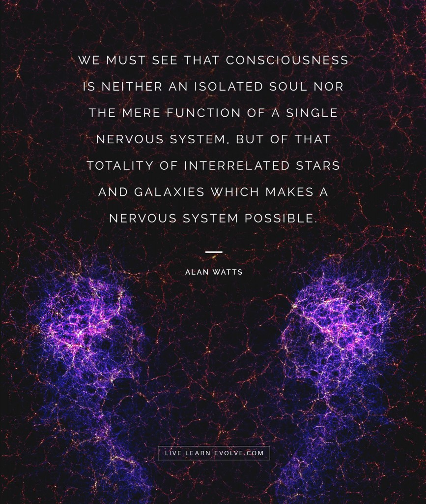 alan-watts-consciousness-human-galaxy