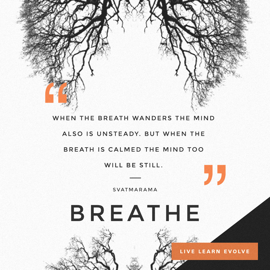 svatmarama_breath_mindful
