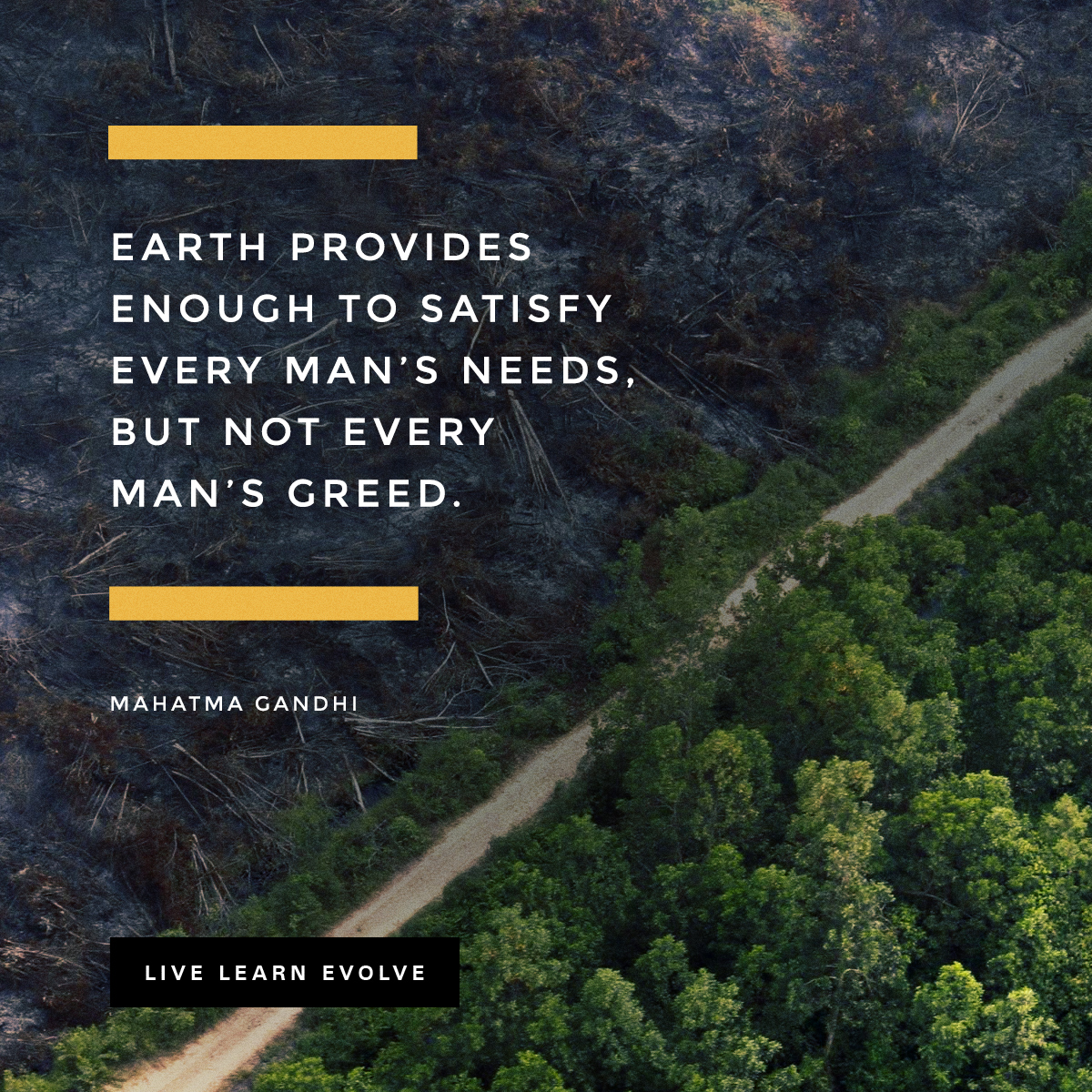 mahatma_gandhi_earth_greed_need_man