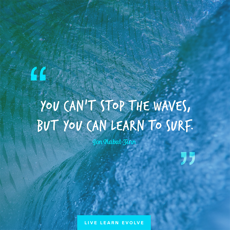 jon-kabat-zinn-surf-waves-reality copy