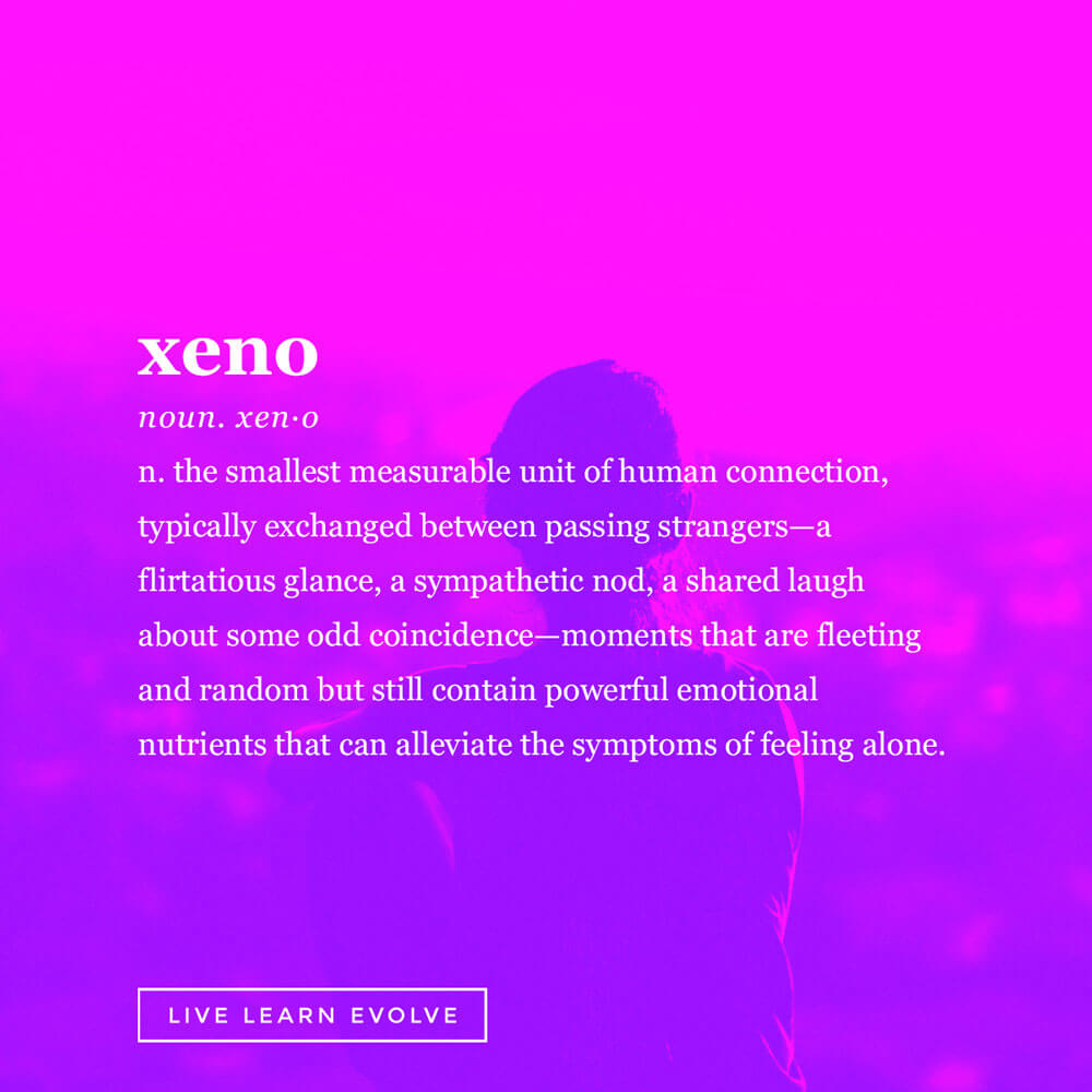 beautifully-obscure-words-xeno