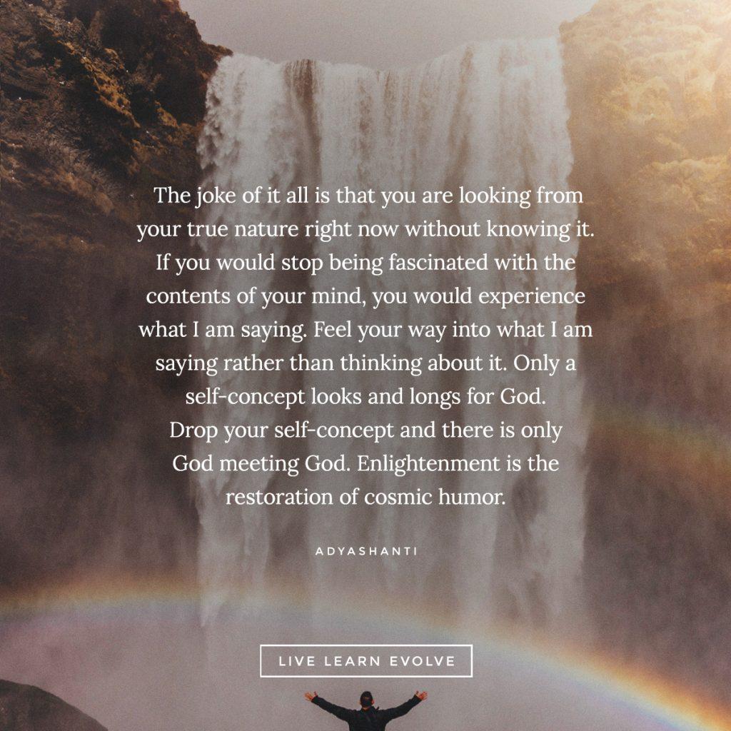 adyashanti_enlightenment_nature_quote