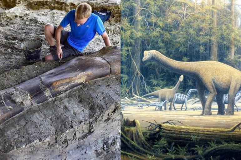 ginormous_dinosaur_bone_discovered_france